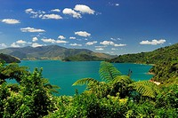 Kenepuru Sound, Marlborough Sounds National Park, South Island, New Zealand
