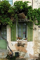 Old tall vine growing over a picturesque window framed by green shutters and with a red heart hanging in the window, Gordes, France