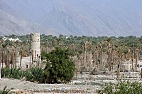 Oasis and watchtower, Hajar al Gharbi, Hajar mountains, Oman