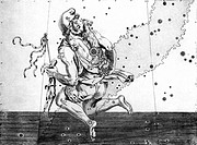 Auriga constellation. 17th century engraving of Auriga the Charioteer, overlaid with the positions of the stars that make up this constellation. Aurig...