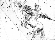 Centaurus constellation. 17th century engraving of Centaurus the Centaur, overlaid with the positions of the stars that make up this constellation. Th...