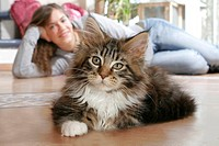 Young woman with Maine Coon Cat at home