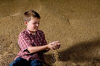 Boy playing with wheat grains from mound