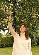 A female picking an apple from a tree