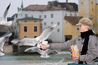 a woman feed the gull