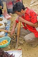 Vietnamese is smoking his pipe, Vietnam, Asia