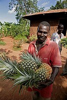 UGANDA  Batambuze Michael holding pineapples  Kayunga District