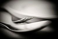 Cubiertos: cuchara y tenedor. Bodegón. Still Life.