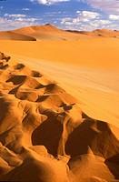 Namib desert and sanddunes, Sossusvlei, Namibia, Africa