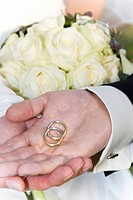 Hands of a bridal couple with wedding rings