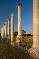 Antique Gymnasium, Palaestra, with columned courtyard, Archaeology, Salamis ruins, Salamis, North Cyprus, Cyprus