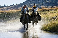 Cowboys riding in water, wildwest, Oregon, USA