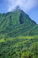 Mountain in the wild interior of the island of Fatu Iva, French Polynesia