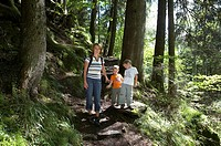 Hiking woman with two boys, forest, Carinthia, Austria