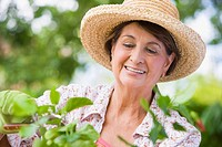 Senior Hispanic woman gardening