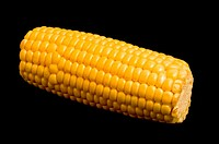 Close_up of a corncob
