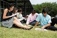 Five university students sitting in a lawn and studying