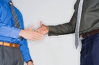 Close_up of two businessmen shaking hands