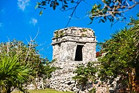 Trees in front of old ruins of a building, Zona Arqueologica De Tulum, Cancun, Quintana Roo, Mexico