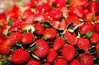 Close_up of strawberries, Zacatecas State, Mexico