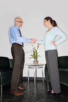 Businessman and a businesswoman shaking their hands