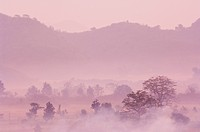 Morning fog over Mrauk U, Myanmar Burma, Asia
