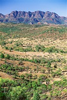 Looking towards the eastern escarpment of Wilpena Pound, a huge natural basin in the Flinders Ranges National Park, South Australia, Australia, Pacifi...