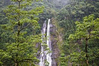 Waterfall in forest in Wulai, Taipei, China