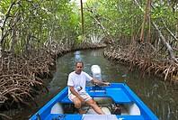 Mangroves near Parguera, Puerto Rico