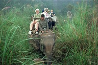 Tourists on elephant back in long grass, viewing game in the Chitwan National Park, Nepal, Asia