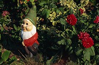 Close_up of a garden gnome outdoors beside a red dahlia in flower