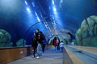 Oceanografic aquarium, City of Arts and Sciences, Valencia, Spain, Europe