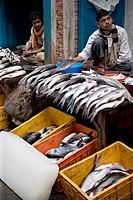 Men selling freshwater fish early morning in a street market, Kathmandu, Nepal, Asia