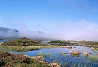Lochan na h_Achlaise, Rannoch Moor, Black Mount in the background, Highlands, Scotland, United Kingdom, Europe