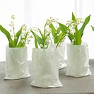 lilies of the valley in white paper bags