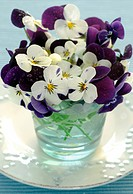 Pansies in a glass bowl