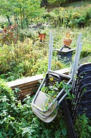 Stack of chairs in overgrown garden (thumbnail)