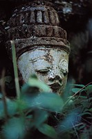 Placid face of Buddha, statue in forest