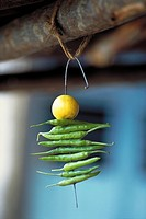 Indian Nimbu Mirchi charm