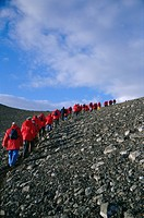 Tourists ascending recent volcanic cone, Penguin Island, South Shetland Islands, Antarctica, Polar Regions