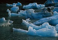 Icebergs Floating in Portage Lake SC AK Summer