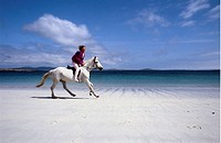 Kvinna Rider På Vit Häst På Sandstrand, Woman Riding On Horse By Beach