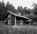 Torp I Förfall, Småland, Summer Cottage Surrounded Trees B/W