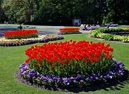 Trädgårdsföreningen, Göteborg, Formal Garden, Elevated View