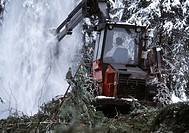 24X36 FOTO: Claes Grundsten COPYRIGHT BILDHUSET, A Man Operates Logging Machinery