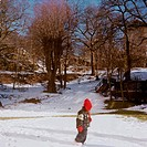 Girl With Red Cap Goes In Slottskogen, Gothenburg, Girl With Red Cap Walking On Snow