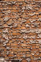 Tegelvägg Och Murbruk, Brick Wall, Full Frame
