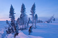 Winter Scenery, Churchill, Manitoba, Canada