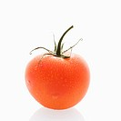 Still life of wet red ripe tomato against white background
