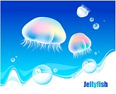 fishes, sea, underwater, undersea, ocean, jellyfish